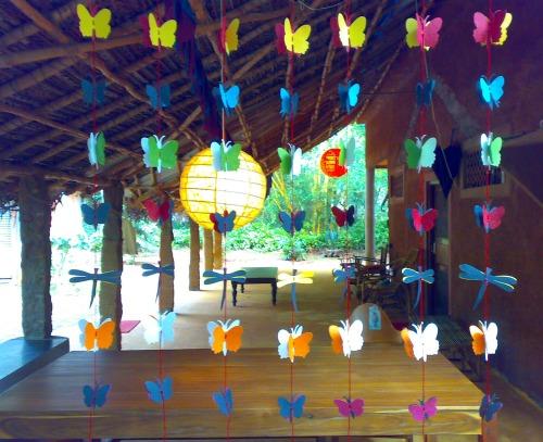 Butterflies-garden6