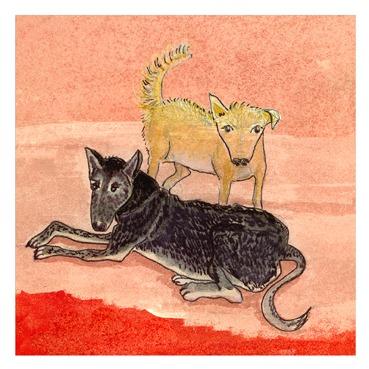 Dog13marge