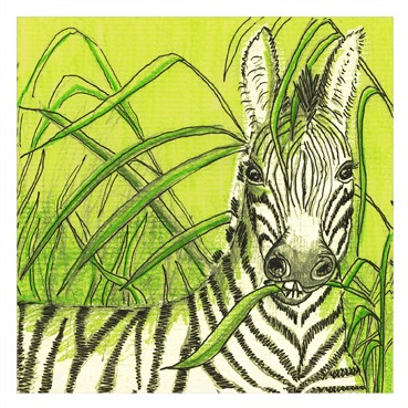 Zebra13marge